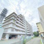 チュリス南熊本 ☆サンリブシティ近くの好立地♪☆  4階 / 8階建